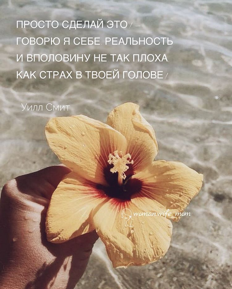 Женский блог • Путь к себе в Instagram: «❝ Просто сделай это! - говорю я себе. ⠀ Реальность и вполовину не так плоха, как страх в твоей голове! ❞ #уиллсмит ⠀ 💯 ТАК И…»