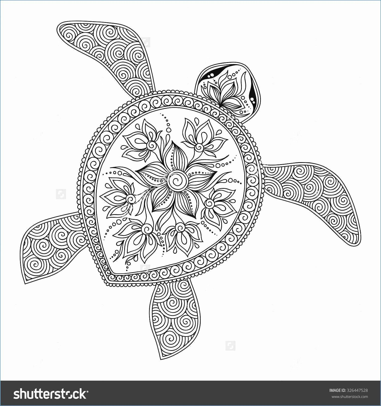 Free Finding Dory Coloring Pages In 2020 Turtle Coloring Pages Animal Coloring Pages Nemo Coloring Pages