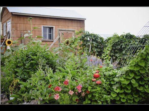 Summer Cottage Garden Tour | I need HELP! | English Style ...
