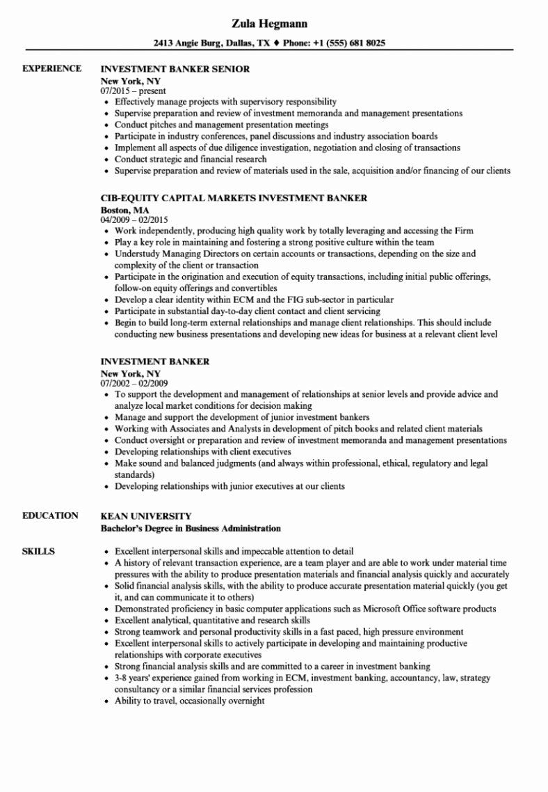 20 Goldman Sachs Investment Banking Resume Investment