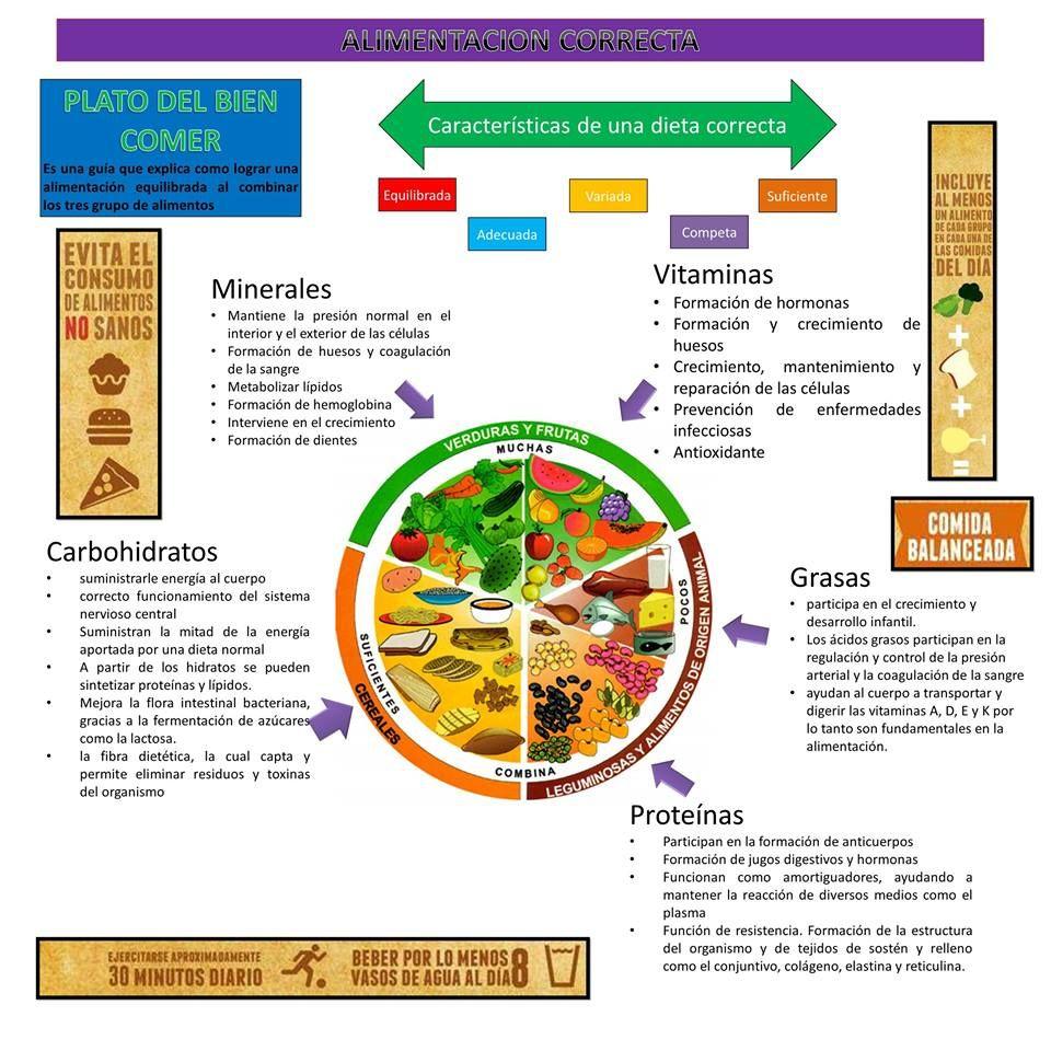 Plato Del Bien Comer Mexicano Plato Del Bien Comer Plato Del Buen Comer Actividades De Nutrición