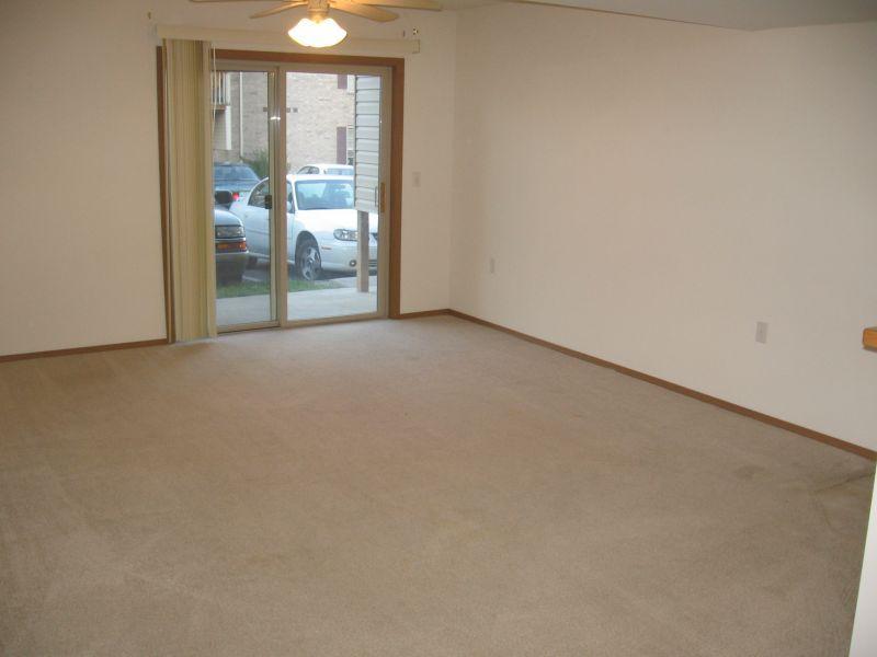 Carpet In Living Rooms