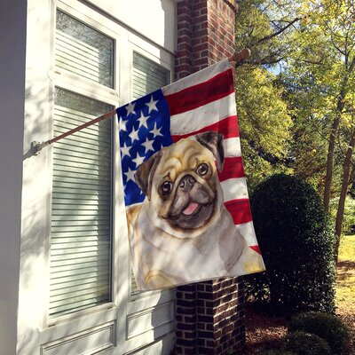 Caroline S Treasures Beagle Patriotic 2 Sided Polyester 3 4 X 2 4 House Flag Dog Breed Brown Pug House Flags Carolines Treasures Baby Horses