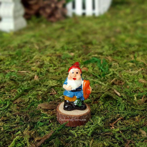 Gnome In Garden: Fairy Garden Gnome With Carrot