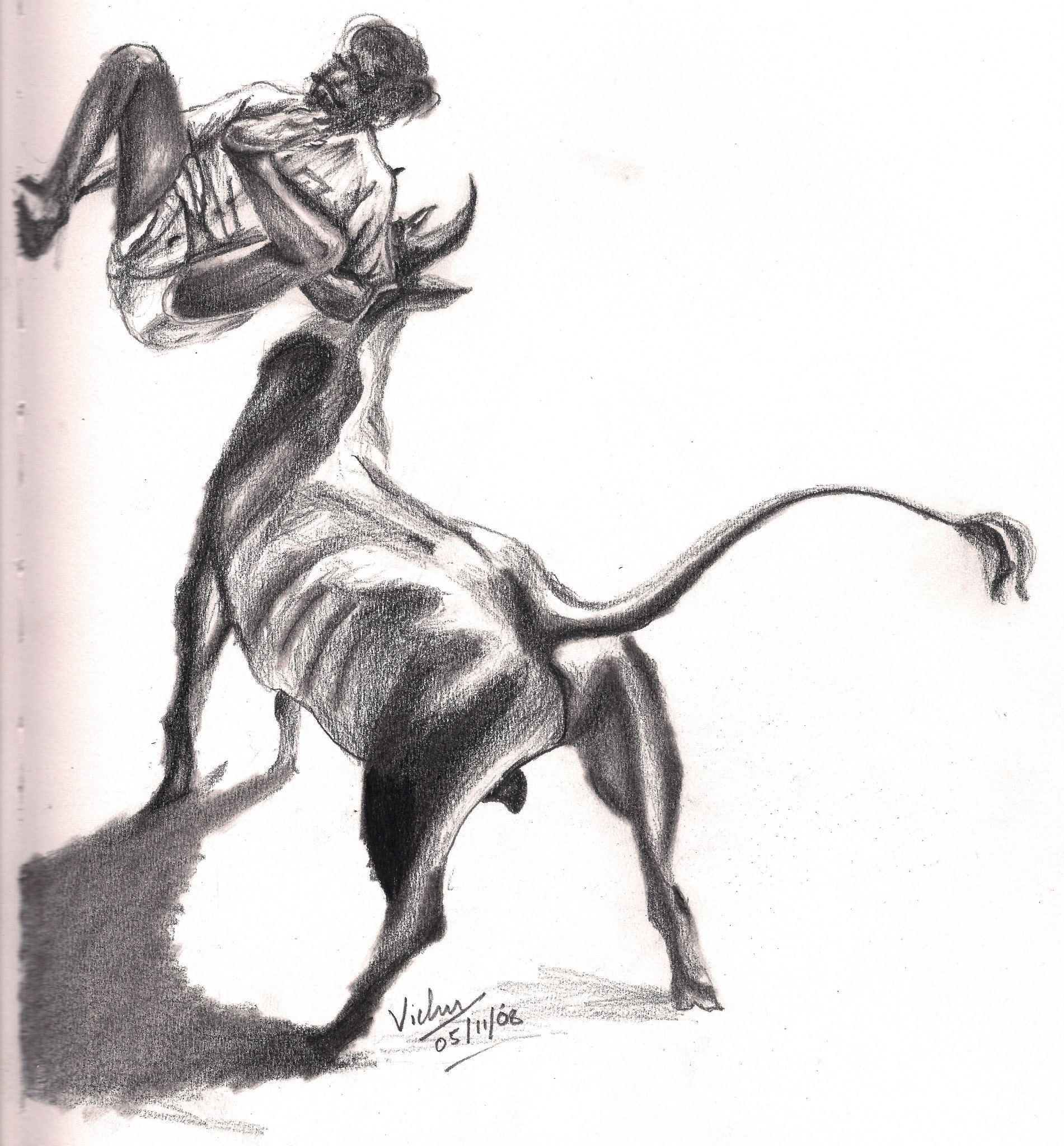Drawings For Jallikattu With Outline Black And White