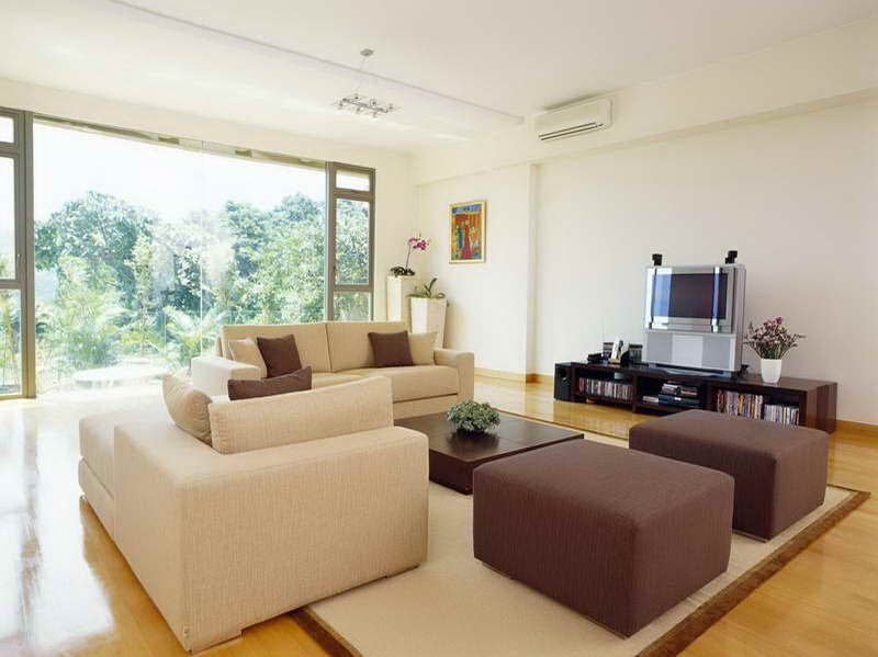 small living room designs and ideas with common design