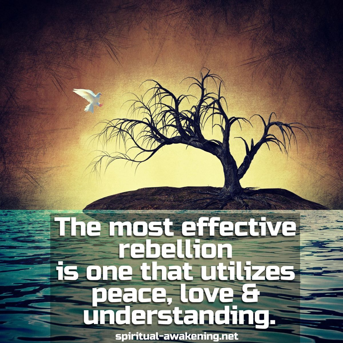 The Most Effective Rebellion Is One That Utilizes Peace Love And Understanding Spiritual Spirituality Spiritual Quotes Spiritual Inspiration
