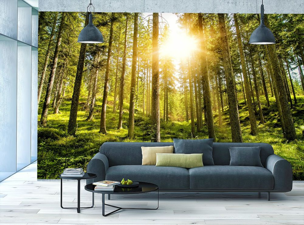 Sunny Forest View GreenTrees Relaxing Nature Murar Photo Wallpaper ...