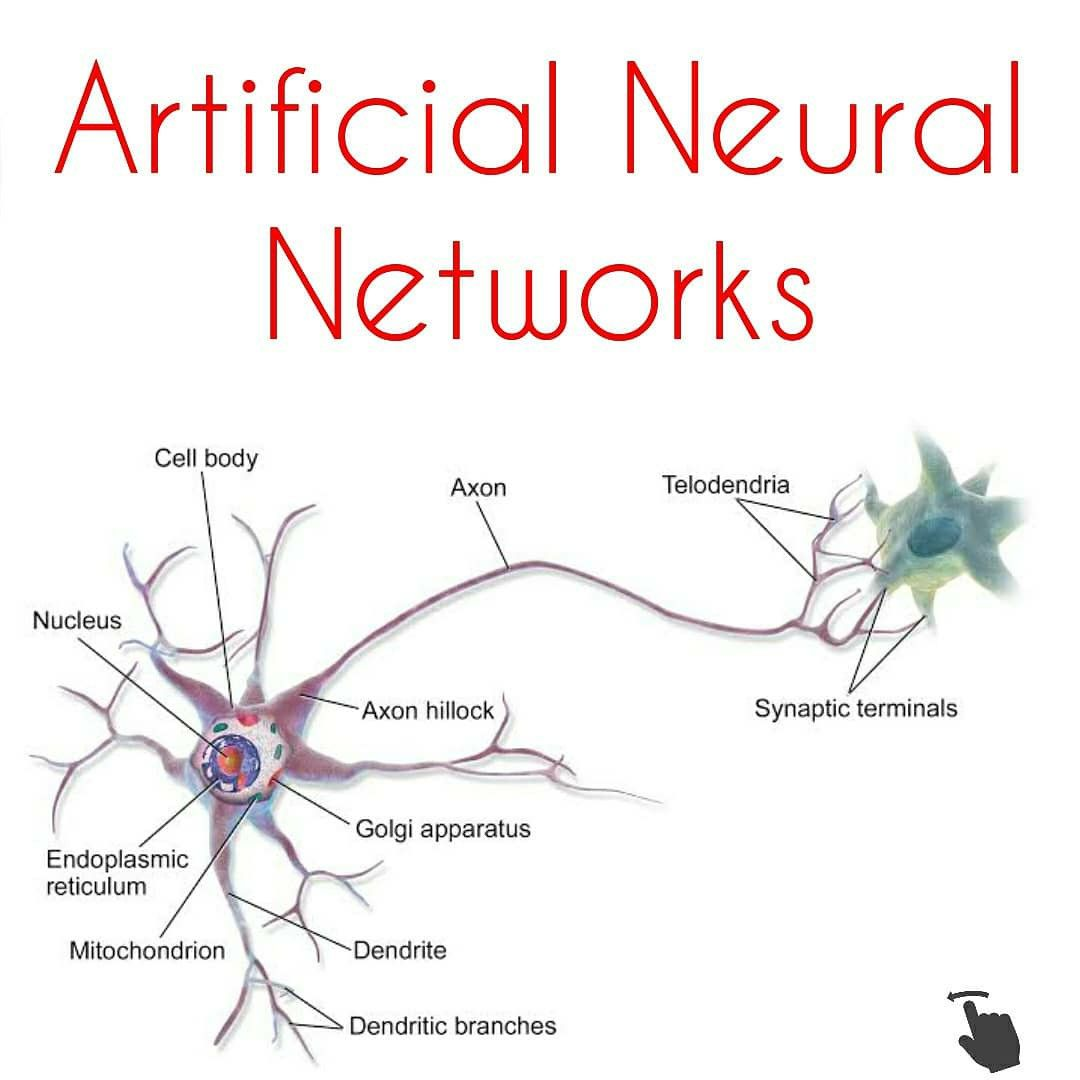 Artificial Neural Networks Artificial Neural Network Deep Learning Data Science