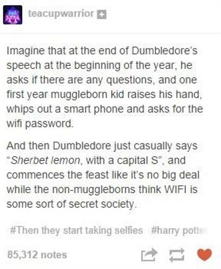 15 Hilarious Muggleborn Headcanons From Tumblr That Will