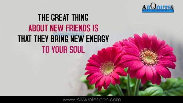 55 Inspiring Friendship Quotes In English Wallpapers Best Wonderful Images