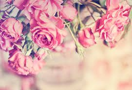 Image Result For Vintage Roses Tumblr Beautiful Flowers Pretty Pink Rose Flower