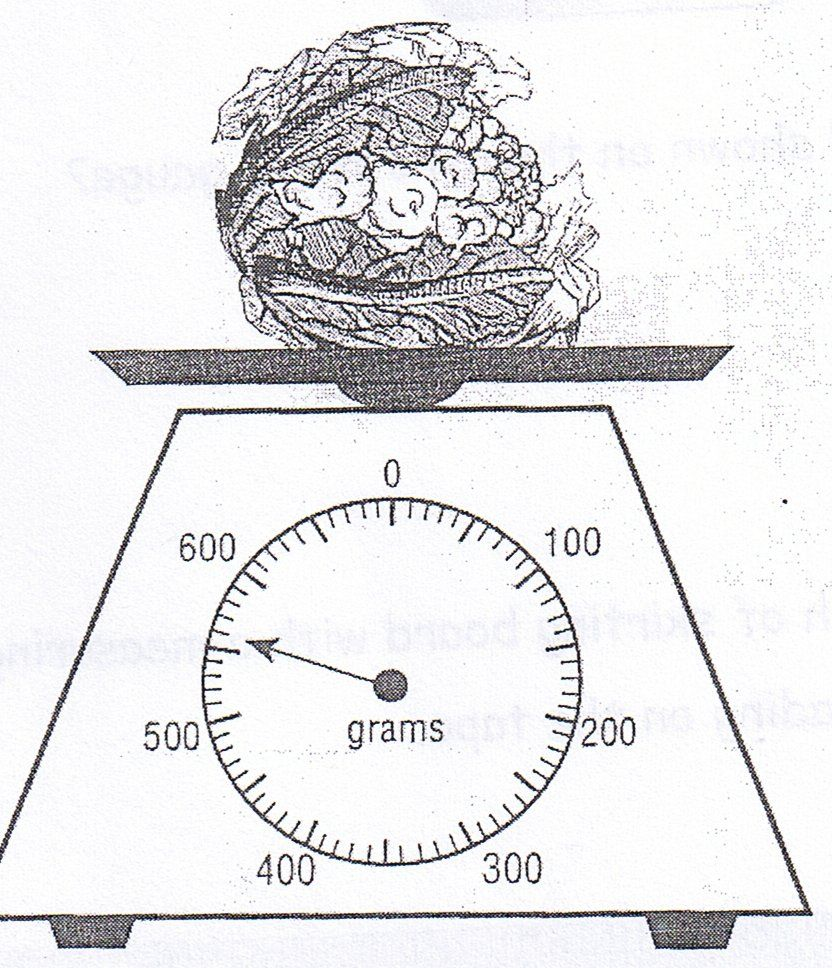 Can You Read The Scales Correctly Reading Canning Math [ 968 x 832 Pixel ]