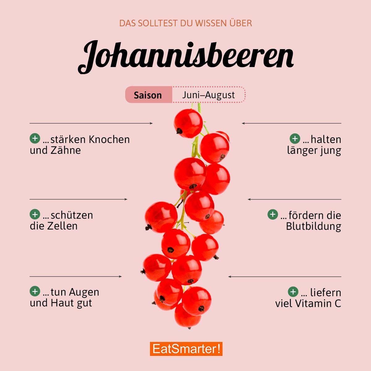 Das solltest du über Johannisbeeren wissen | eatsmarter.de #johannisbeeren #beeren #infografik #ernährung #vitamins