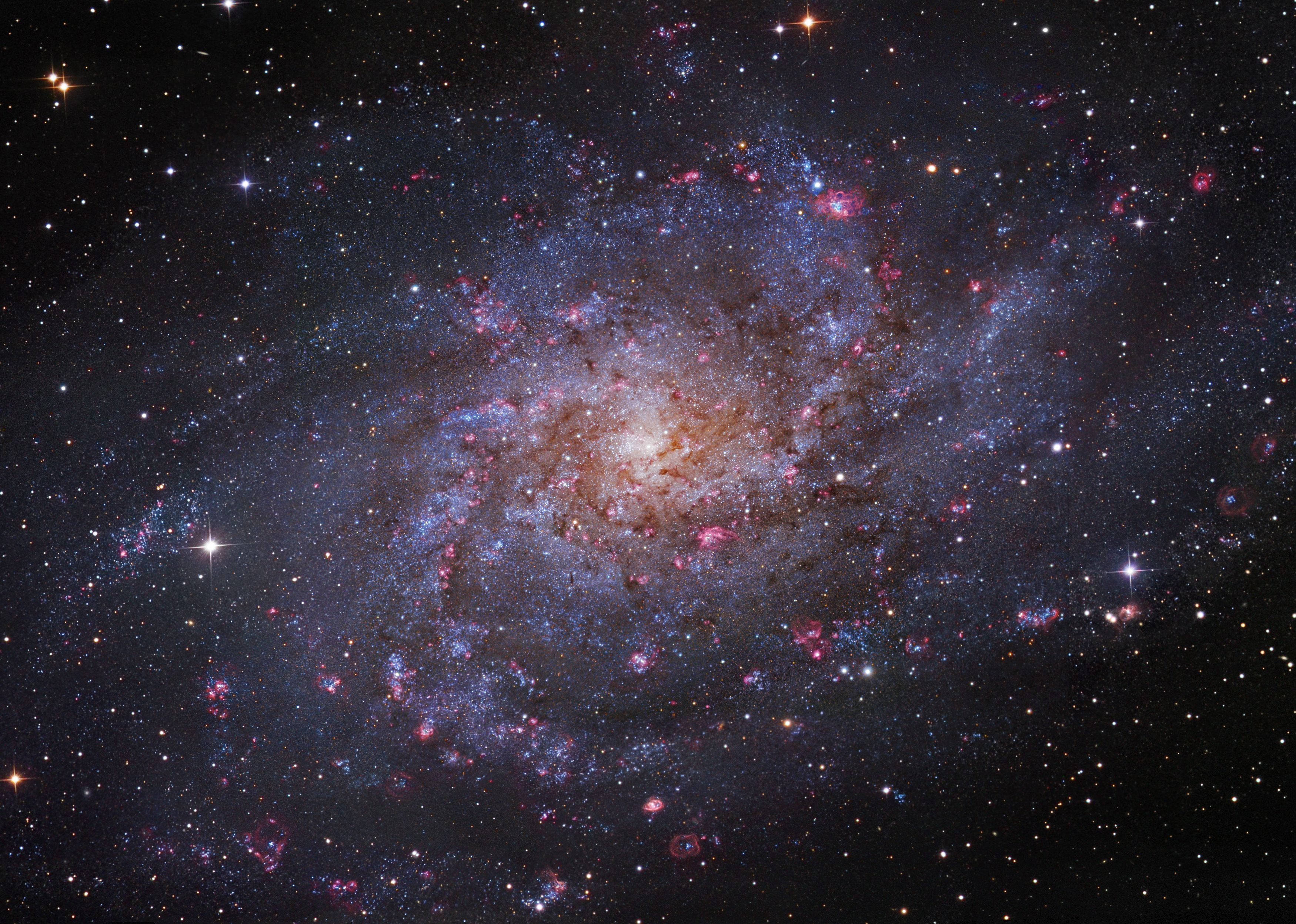 M33 Triangulum Galaxy The Small Northern Constellation Triangulum Harbors This Magnificent Face On Spiral Gala Triangulum Galaxy Spiral Galaxy Galaxy Images