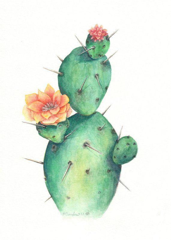 Single Cactus Watercolor Cactus Cactus Art Cactus Garden Cactus Indoor Cactus Plants Etsy Item Unava In 2020 Cactus Painting Watercolor Cactus Cactus Paintings