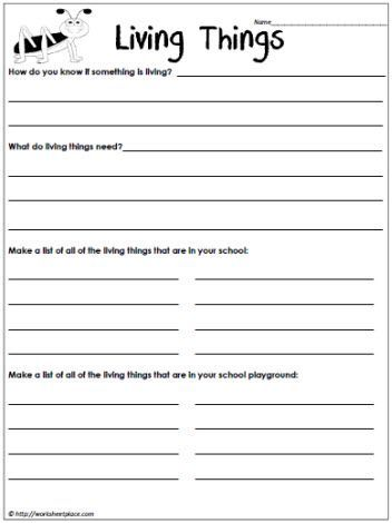 Worksheet Classification Of Living Things Worksheet 5th Grade characteristics of living things grade 1 google search my 1st search