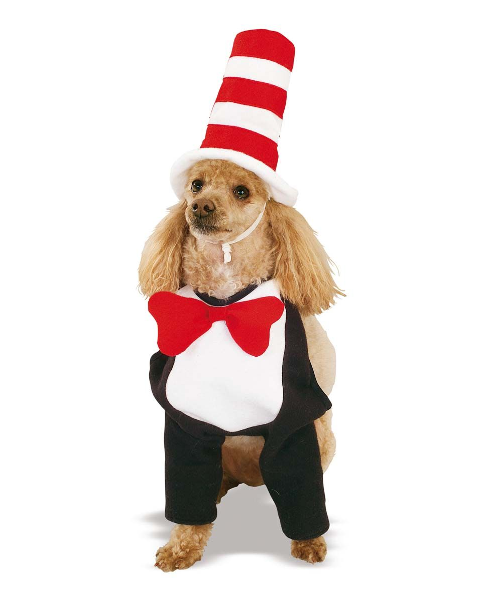 cat in the hat dog halloween costume | powerpoint for nichols