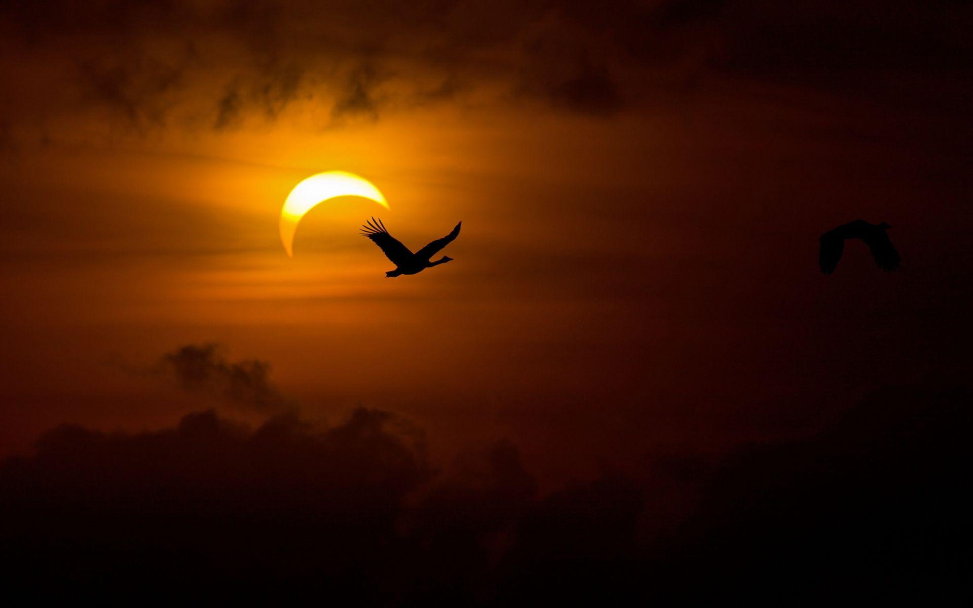Space solar eclipse iphone plus Wallpaper iPhone Plus 1280×1024 Eclipse  Pictures Wallpapers (48