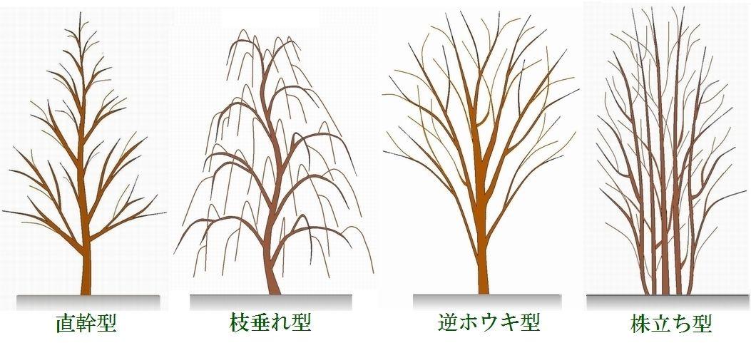 お庭手入れ 植木剪定 枚方の植木屋 造園社みやび 庭木お手入れ