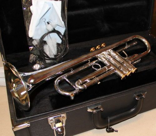 Daily Limit Exceeded Trumpet Case Coach Swagger Bag Silver Gold
