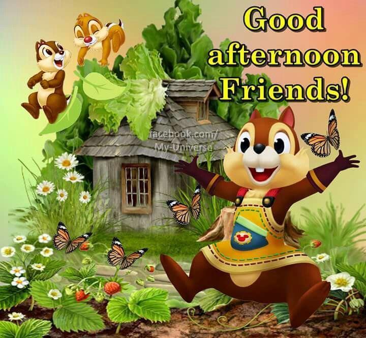 Good Afternoon Friends Good Afternoon Good Afternoon Quotes