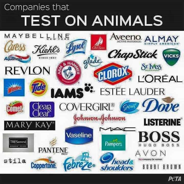 Younique is a cruelty free company They do NOT test on animals. Products are paraben free, gluten free & some are even Vegan friendly!