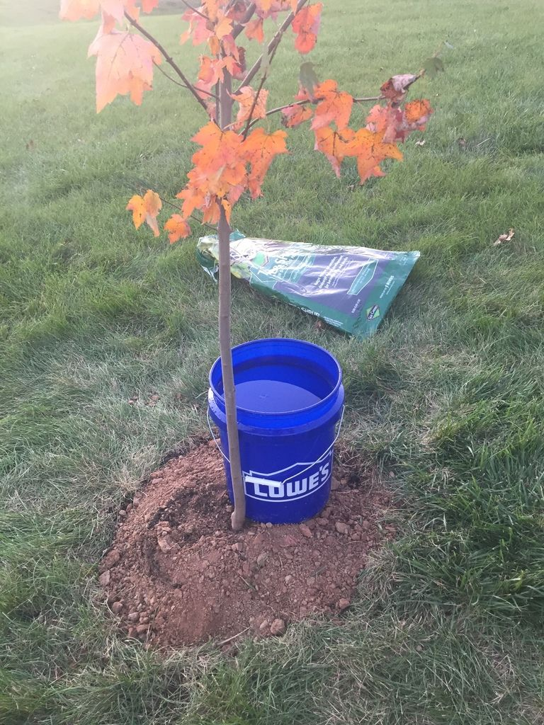 Portable Watering System For Trees And Garden By Packetpaul