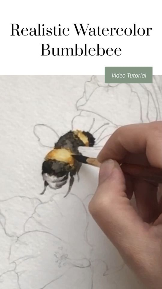 How to paint a watercolor bumblebee! Continuing our realistic  bumble bee tutorial series, this time with a beautiful watercolor that is easy to replicate but looks like it was so much harder than it actually was! I can't wait to share this watercolor tutorial with you! #bumblebee #watercolor #watercolortutorial #videotutorial #realisticdrawings