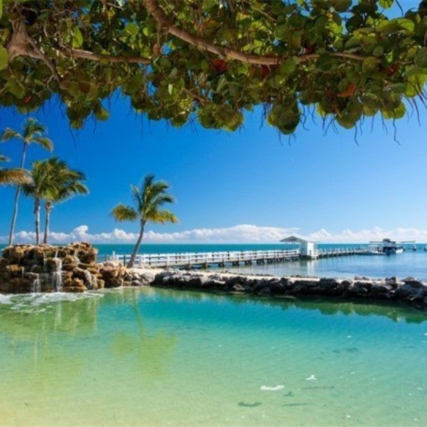 Blue at it's best. #bluewaters #ocean #water #paradise #cheecalodge #florida #sky #palmtree #islamorada #saycheeca