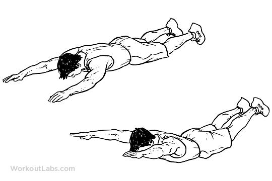 lower back exercises-superman exercise