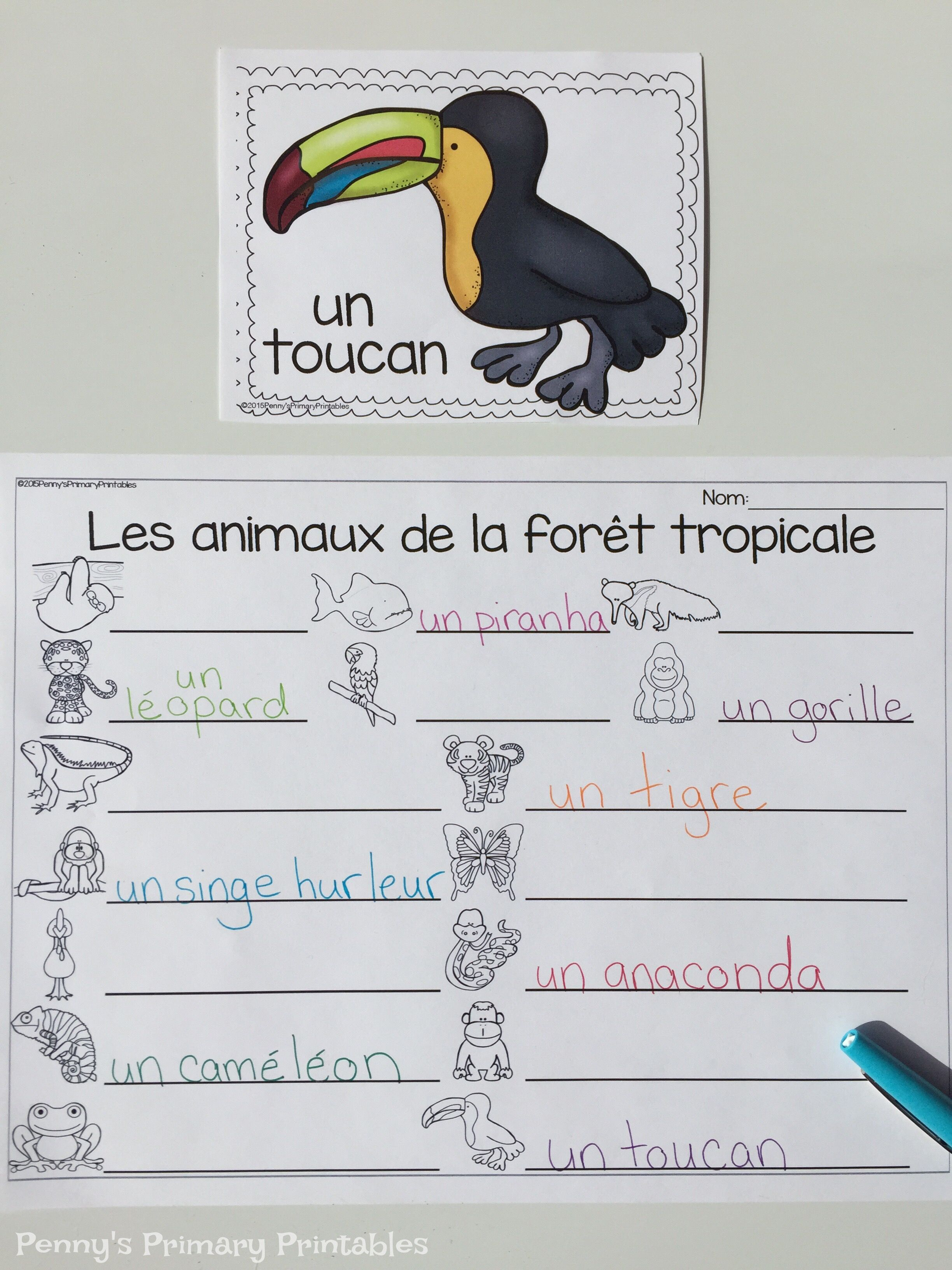 All About Rainforest Animals Practice Reading And Writing French Rainforest Animal Words In This Rainforest Animals Independent Activities Literacy Activities