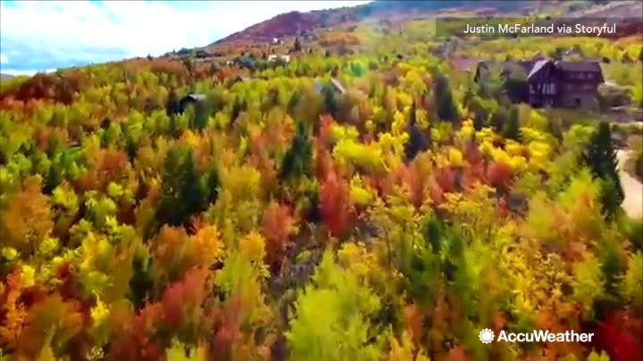 Check Out This Vivid Fall Foliage Captured In Garden City Utah