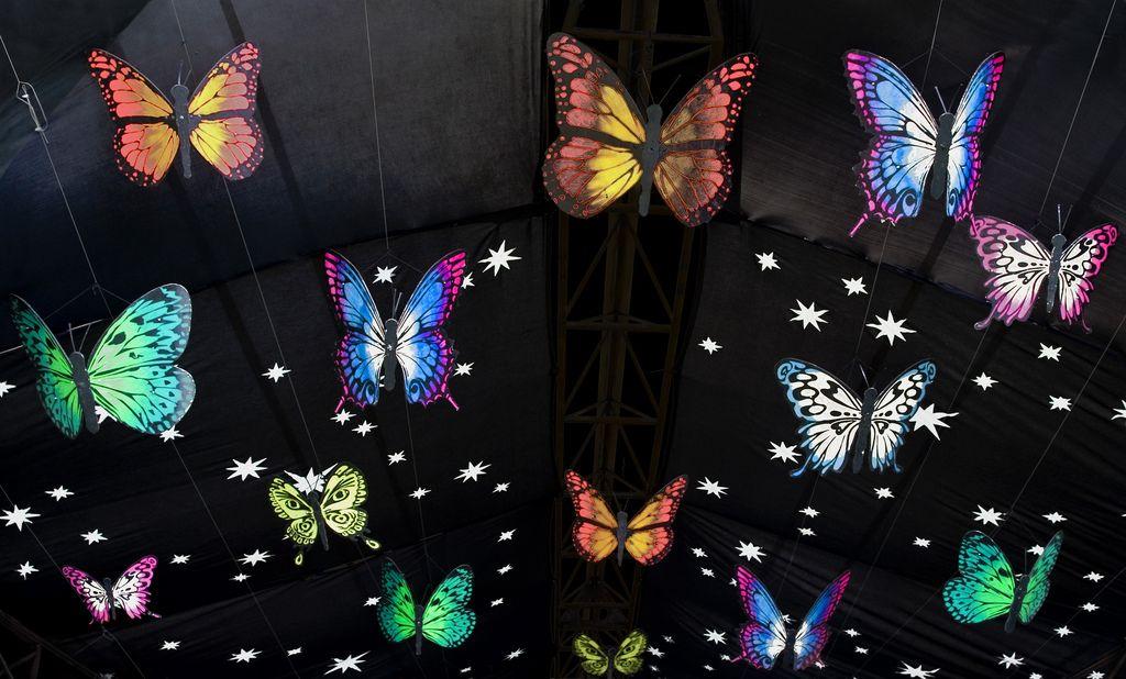https://flic.kr/p/5iQNM8   A Dance of Butterflies - Glastonbury 2008   Seen in…
