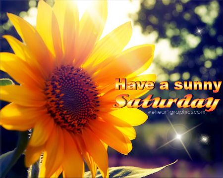 Image result for sunny saturday pinterest