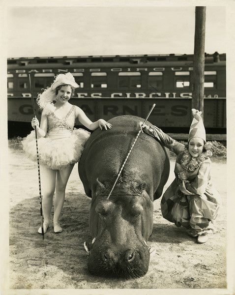 women of the circus