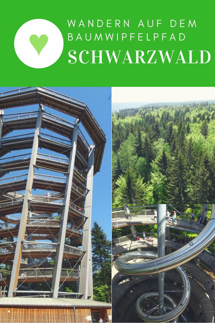 Toller Tagesausflug zum Baumwipfelpfad Schwarzwald in Bad