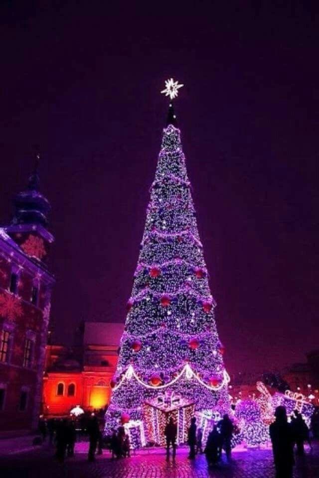 Love it ! The Color Purple Pinterest Navidad, Navidad blanca - Luces De Navidad