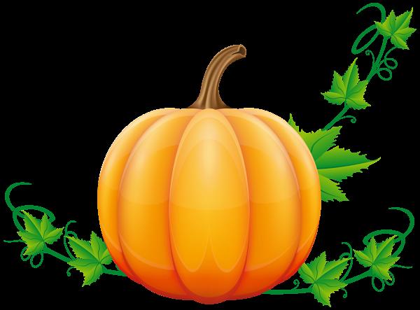 Pumpkin Png Clip Art Image Pumpkin Png Clip Art Free Clip Art