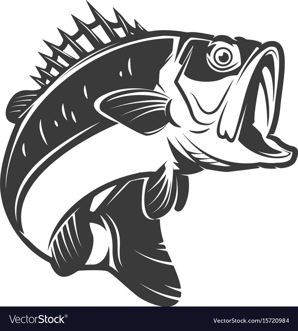 24++ Simple bass fish clipart information