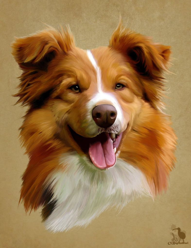 Realistic Dog Portrait Headshot Painting Canine Art Dog Portraits