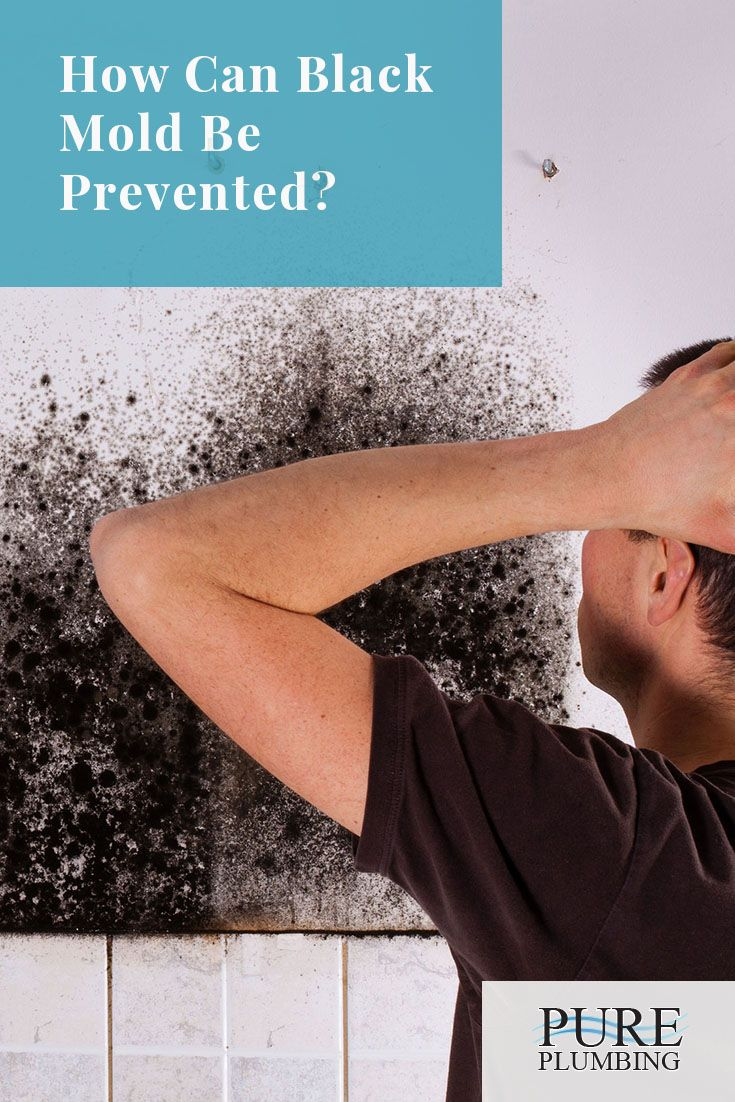 Preventing black mold pinterest leaky faucet and simple projects as a homeowner there are plenty of do it yourself projects that with the proper preparation and understanding of the problem do not require calling in a solutioingenieria Image collections