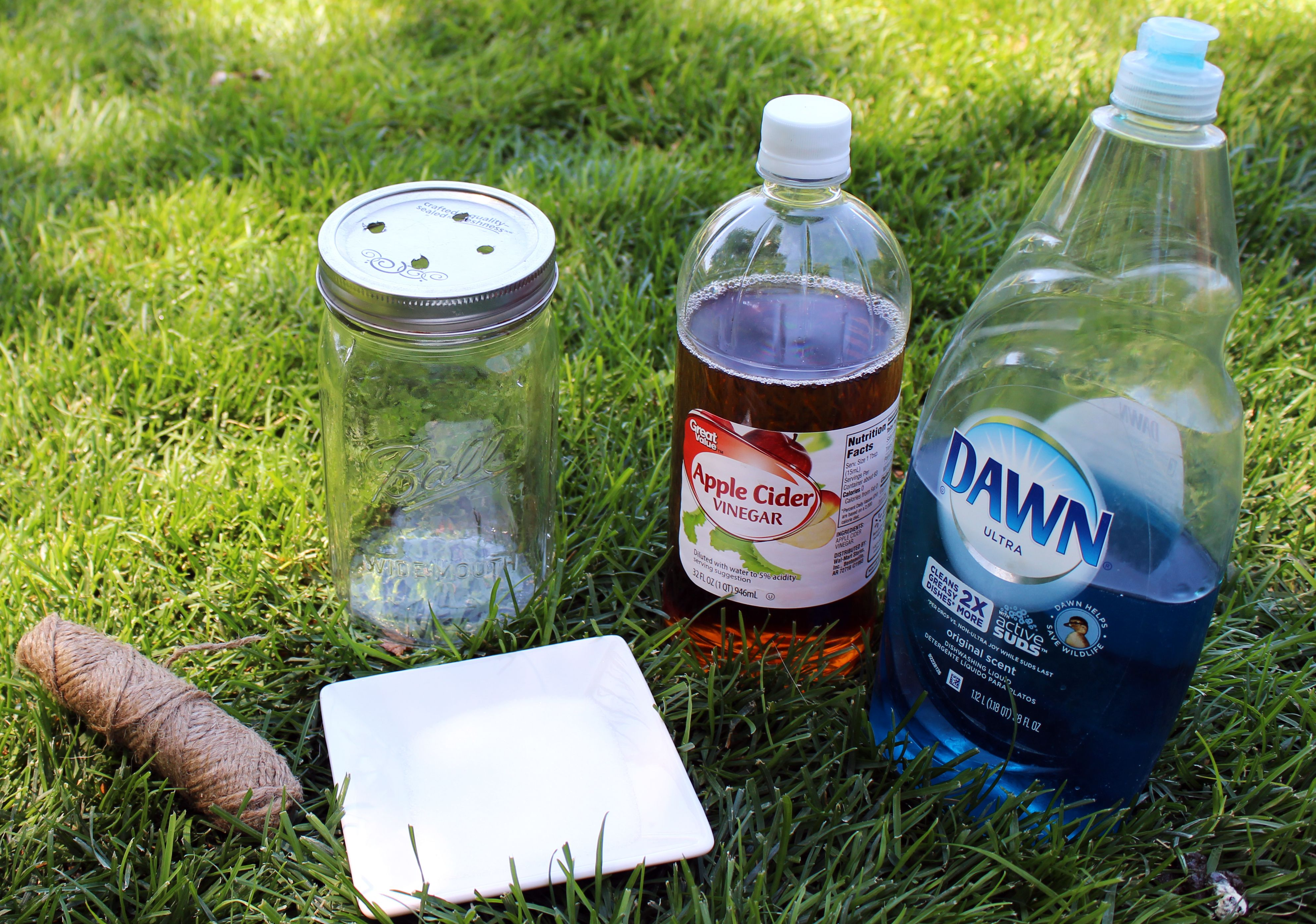 Easy Fly Trap Recipe Homemade fly traps, Diy fly trap