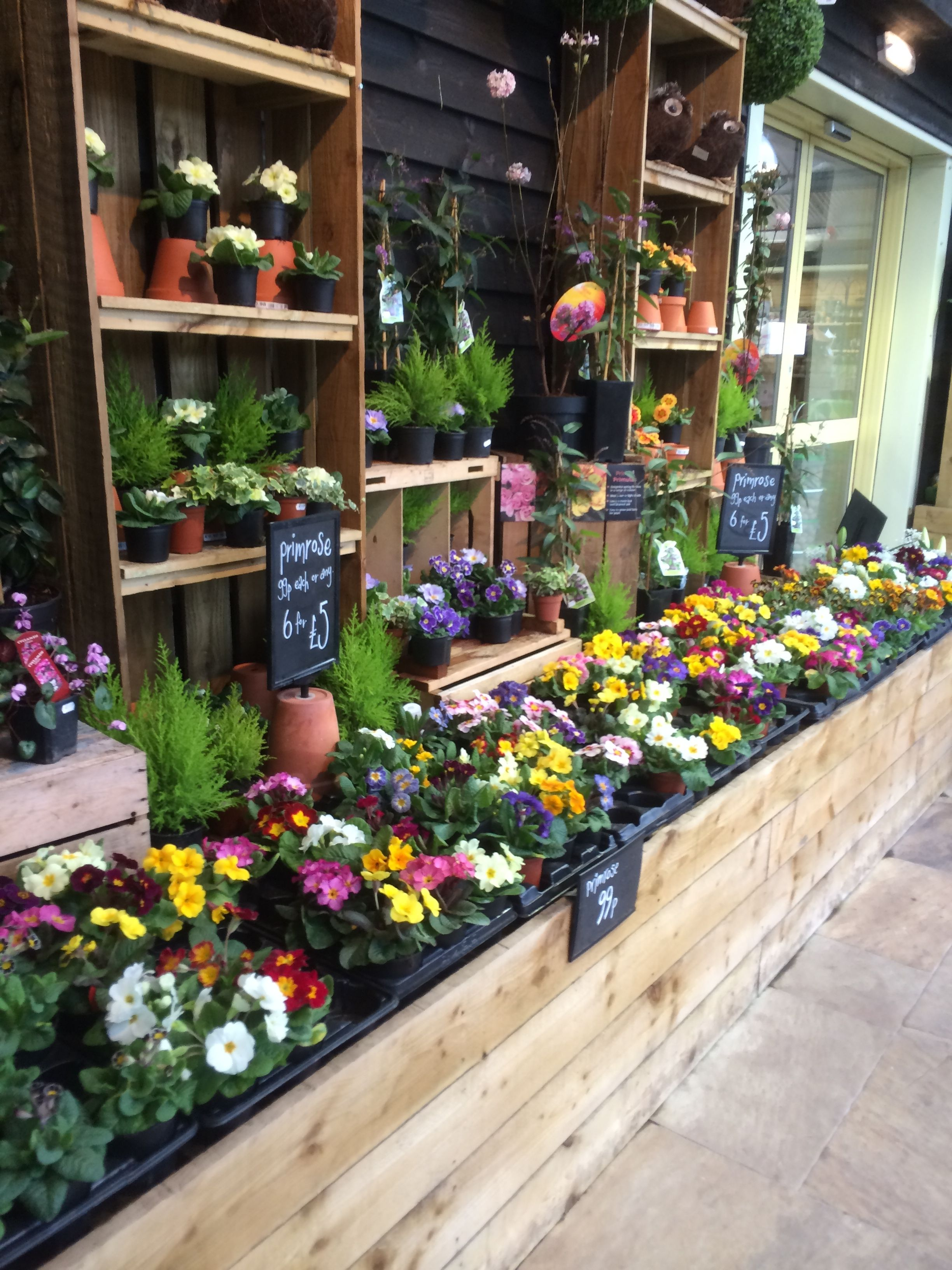 Timmermans Garden Centre Nursery Outdoor Retail Home Lifestyle Plants Visual Merchandising Layout Landscape