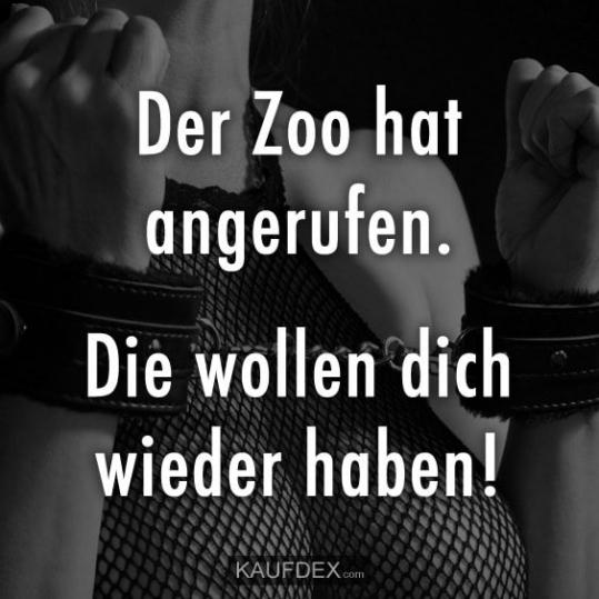 Zoo Sprüche