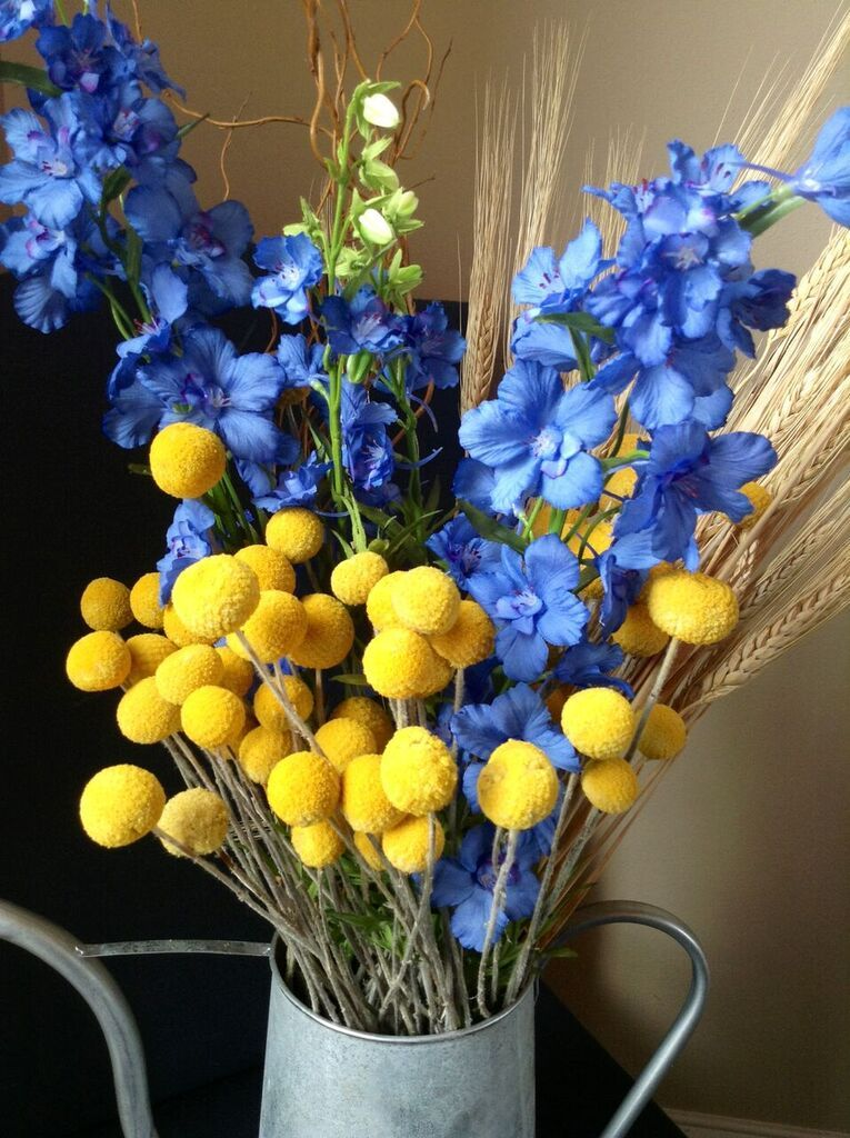 Billy Button Dried Flowers Billy Buttons Dried Flowers Dried Flower Arrangements