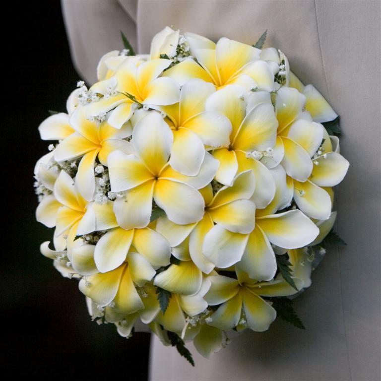 Plumeria Bouquet From Hawaii