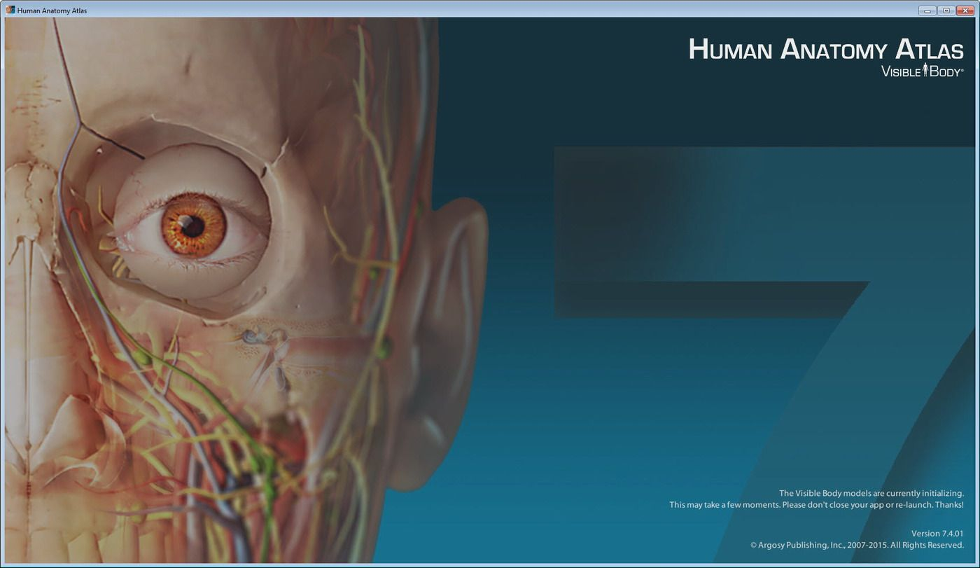 Visible Body Human