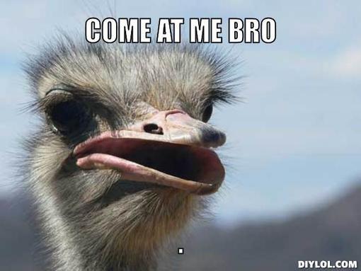 Ostrich Face Meme Generator - DIY LOL | cute | Pinterest