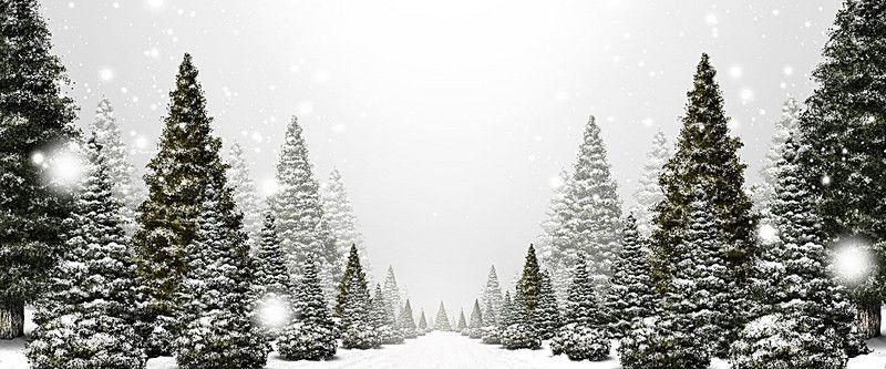 Winter Christmas Tree Backgrounnd Christmas Desktop Wallpaper Christmas Desktop Christmas Wallpaper Backgrounds